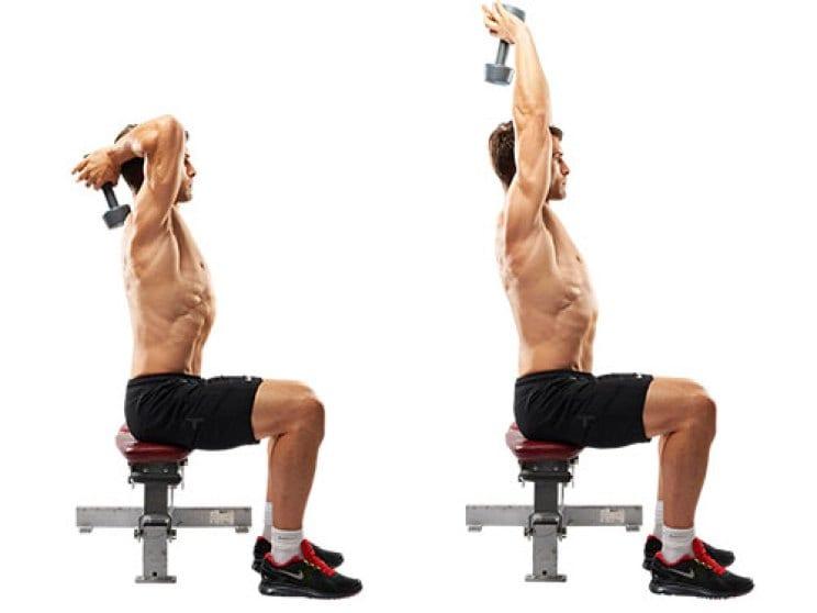 Musculation des triceps à la maison MEILLEUR PRIX