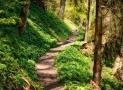 Notre dossier spécial pour la randonnée – Partez bien équipé !